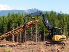 Forest Machines
