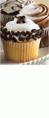 Cupcake Galore!