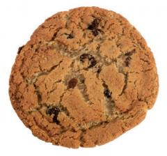 3 oz. Oatmeal Raisin Cookie