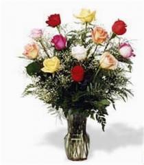 TF-RO-07 Roses