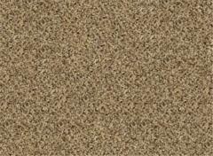 Textured Plush Carpet