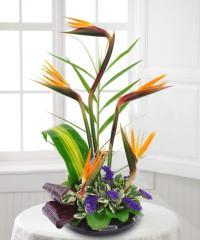 Mahalo Floral Arrangement