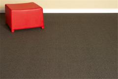 Commercial Loop Carpet