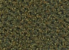 Balance - Checking Carpet
