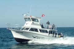 Newton 46' Dive Special Boat