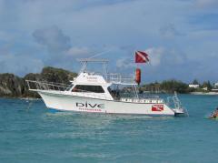 Newton 42' Dive Special Boat