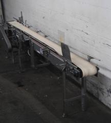 11-Ft Belt Conveyor