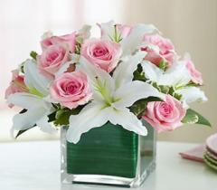 Modern Embrace Bouquet 8852c