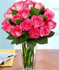 18 Pink Pearl Roses
