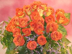 Long Stem Leonidas Roses