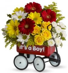 Baby's First Flower Wagon