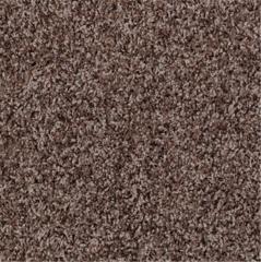 Orient Point (j) - Q3988 Shaw Clear Touch Carpet
