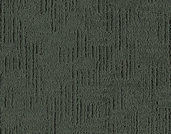 Design Evolution Mohawk Carpet