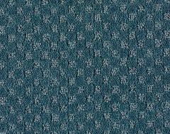 So Intricate Mohawk Carpet