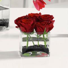 Roses in Glass Cube EV 17-14