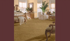 Accepted Morning I / 00202 Carpet
