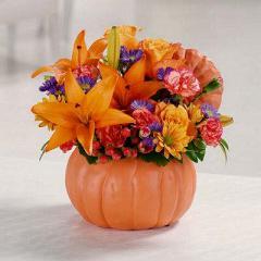 Pretty Pumpkin Petals Flowers