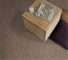 Domino  by  Resista Refresh/Evans Black Carpet