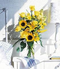 Blazing Sunshine Flowers