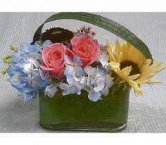 Oval Garden Flowers