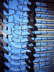 Network & Cabling
