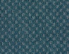 Mohawk So Intricate Carpet