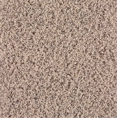 Karastan Coastal Elegance Beach Pebble Carpet