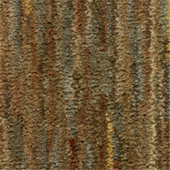 Karastan Capsilon Changing Seasons Carpet