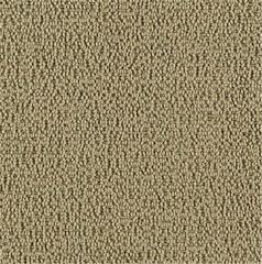 Karastan Cobble Road Aloe Leaf Carpet
