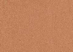 Bold Attitude Mohawk Carpet