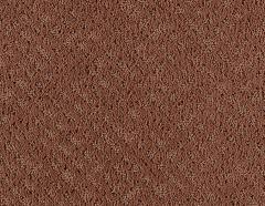 Inspiration Mohawk Carpet
