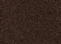 Supreme Intellect Mohawk Carpet