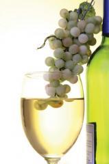2009Compass® белое вино Совиньона