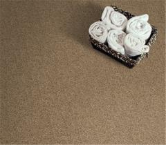 Cross Plains Resista Refresh/Evans Carpet