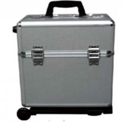 Large organizer case