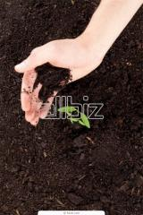 Soil Conditioner Easy-Zyme