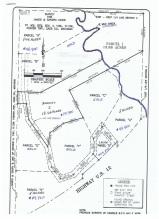 Bois De Leo Rd, LOTS Union MI 49130