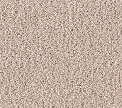 Clever Choice Mohawk Carpet