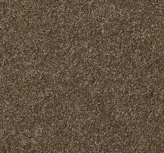 Distinctive Delight Mohawk Carpet
