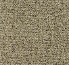 Exotic Coverings Mohawk Carpet