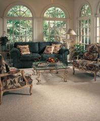 Cobble Hill Cloistral Karastan Carpet