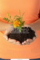 Soil Conditioner