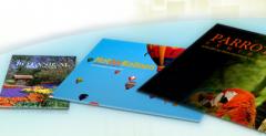Full-Color Postcard