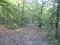Wheatland, MO (Hickory County)  Farm/Ranch/Land