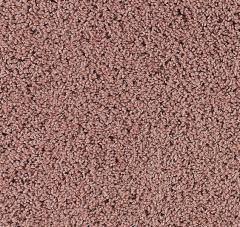 High Regard Mohawk Carpet