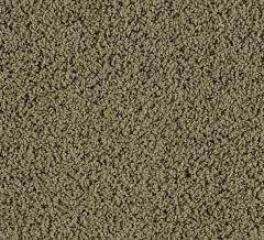 Style Creation Mohawk Carpet