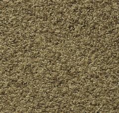 Castilian Mohawk Carpet