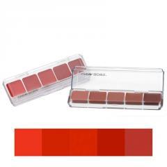 5-in-1 Ultimate Lip Palette, Kit #01 (Can Buy Me