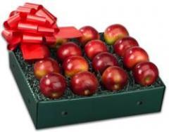 All Mac Apples