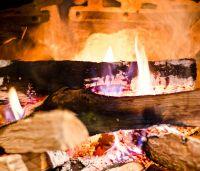 Kiln-Dried Firewood
